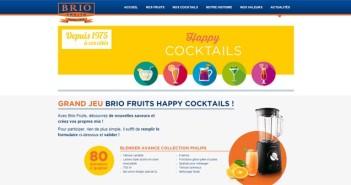 Grand Jeu Happy Cocktails Brio Fruits