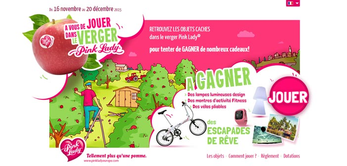 Grand Jeu Novembre Pink Lady – Pinklady-game.com