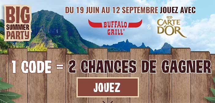 www.bigsummerpartybuffalo.fr – Grand Jeu Big Summer Party