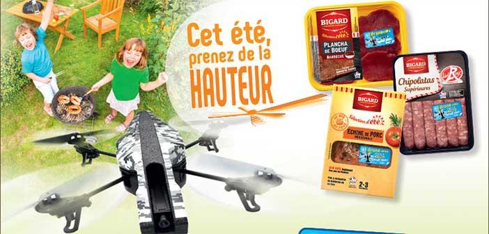 www.jeu-bigard.fr - Jeu Bigard Cet été Prenez de la Hauteur