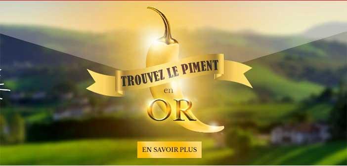 www.bipia.com - Jeu Bipia Le Trésor du Piment en Or