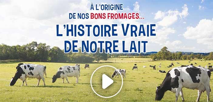 www.ribambel.com - Jeu Ribambel l'Histoire vraie de notre lait